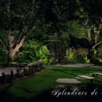 Réalisation d'éclairage de jardin et cour arrière