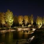 Réalisation d'éclairage d'étang